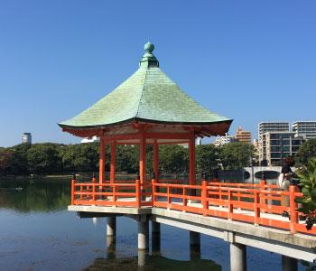 Japon : Kyushu, la Magnifique