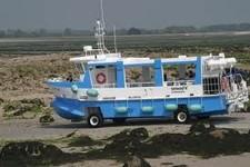 les  bateaux a roulettes