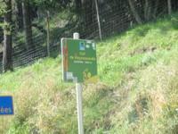 Col de Peyresourde 1 569 m