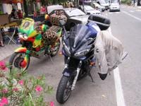 Moto locale