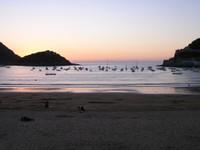 Donostia San Sébastian - plage au crépuscule