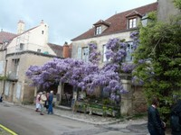 Café des Glycines à Vezelay