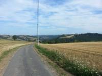 Paysage route Le Luc Haut