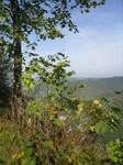 Vue sur la Vallée de la Loue