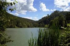 Vue de l'étang de Lucelle