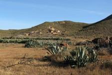 Mines abandonnées de Rodalquilar, Andalousie