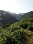 Le pays Basque au lever du soleil