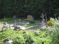 Le parc botanique du Tourmalet