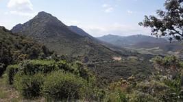 La descente vers Cucugnan.