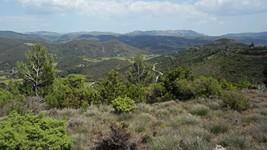 Les falaises de Vingrau depuis Saint-Roch, au dessus de Tuchan.