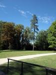 Le parc du château d'Azay-le-Rideau.
