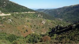La D536 qui monte depuis Montpezat-sous-Bauzon