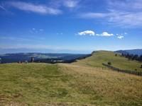 Point de vue Mont d'Or 7
