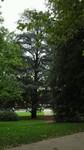 Parc au bord de l'Allier à Vichy