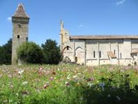 Abbaye Saint Nicolas de Blasimon
