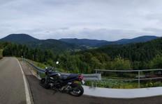Vue sur la Forêt Noire