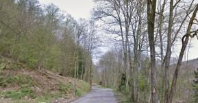 Route de la Croix du Ban-St.-Pierre-La-Palud (source GoogleStreet)