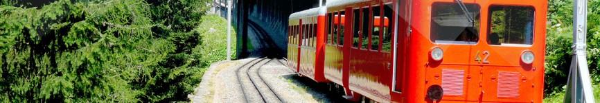 2 Train du Montenvers