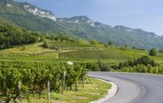 Route de Jongieux