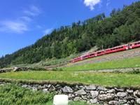 Bas du col de Bernina côté sud