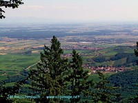 Vue du Haut Koenigsbourg