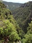 Le vallon de Bairols