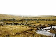 Landscape Aubrac