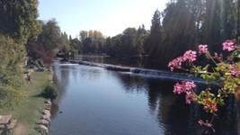 L'Orne à Pont d'Ouilly