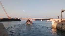 Départ en pêche à Port en Bessin