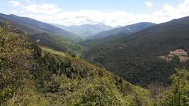 Pyrénées (Esp.)