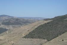 Bienvenue dans la vallée du Douro
