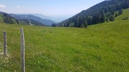 Col de l'Aiguillon